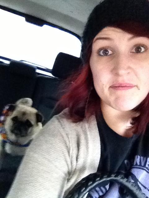 The Pug Meet Up. I'm a Loner Dottie. (1/6)