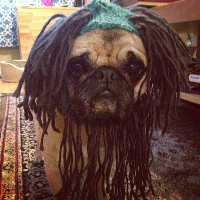 I modified this hat to make Lee transform into RASTA PUG MAHN.